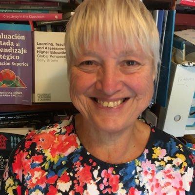 Prof Sally Brown